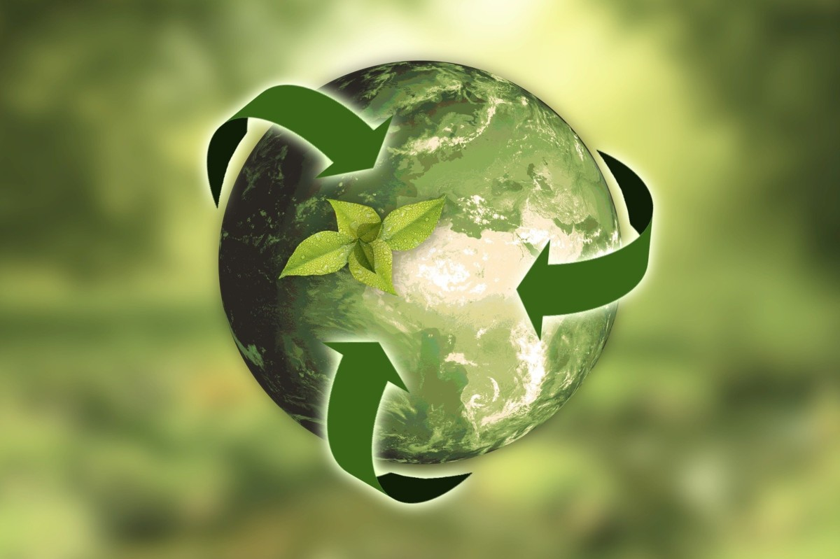 Helping NHS trusts meet sustainability targets